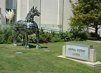 Dallas Museum of Natural History